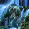 Wolf Falls (50 x 50 actual picture size)