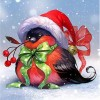 Christmas Robbin (50 x 50 actual picture size)